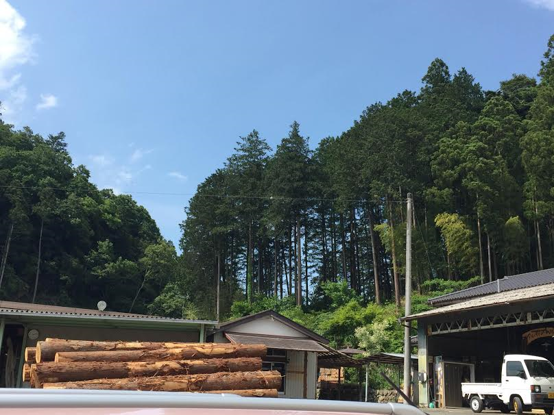 sakamoto-report03